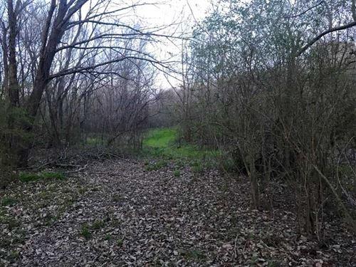13.26 Acres Great Homesite And Hun : Oak Grove : West Carroll Parish : Louisiana