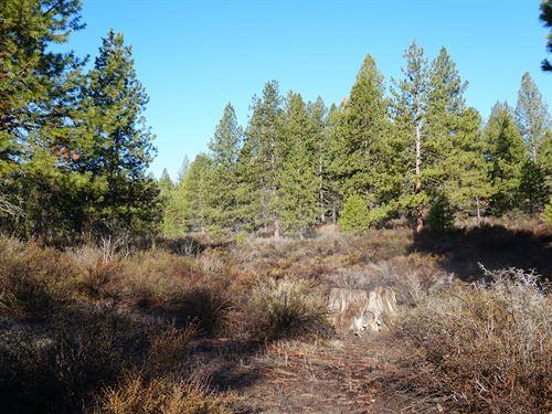 2.5 Acre Property To Build A Home : Chiloquin : Klamath County : Oregon