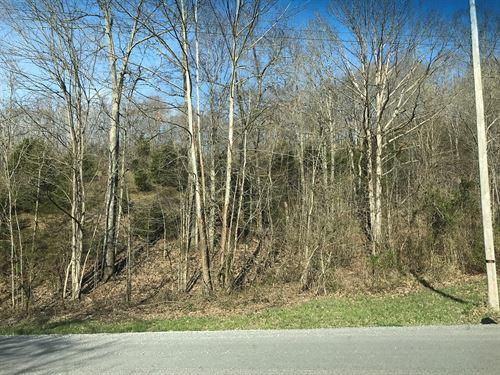 Land For Sale in Kentucky : Burkesville : Cumberland County : Kentucky