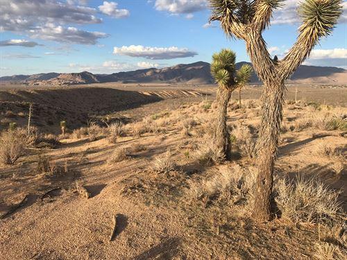 Stunning Views From All Directions : Apple Valley : San Bernardino County : California