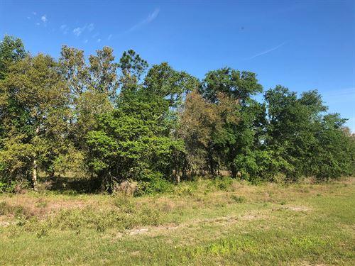 Lot 17 In Deer Meadow Phase 2 : Live Oak : Suwannee County : Florida