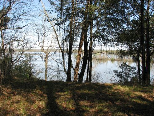 Riverfront Lot With Incredible View : Camden : Wilcox County : Alabama