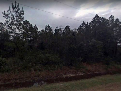Saint Johns County, Fl $35,000 : Hastings : Saint Johns County : Florida