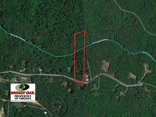 Reduced, 6 Acres of Hunting And : Monroe : Amherst County : Virginia