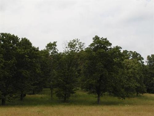 Commercial Land Howell County Close : West Plains : Howell County : Missouri
