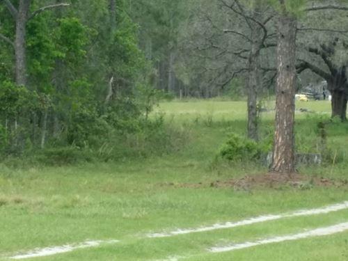 1.5 Acres, Driveway & Small Pond : Polk City : Polk County : Florida