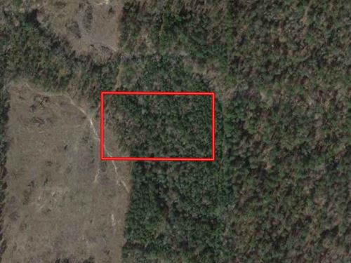 Secluded Unrestricted 5 Acres : Cushing : Nacogdoches County : Texas