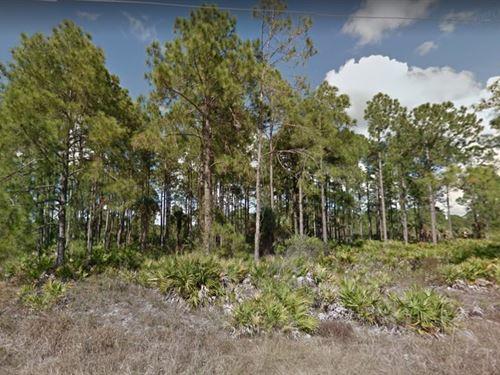 Lee County, Fl $30,000 Neg : Lehigh Acres : Lee County : Florida