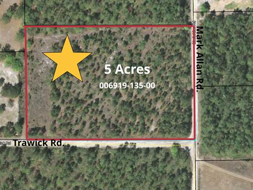 5 Wooded Acres- A-590 : Keystone Heights : Clay County : Florida