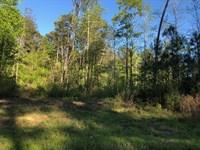 White Oaks Hill : Loganville : Walton County : Georgia