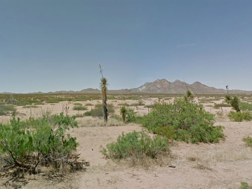 Luna County Ranch Land, Nm : Deming : Luna County : New Mexico