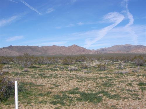 Nice, Scenic, Camp, Build, $227/Mo : Lucerne Valley : San Bernardino County : California