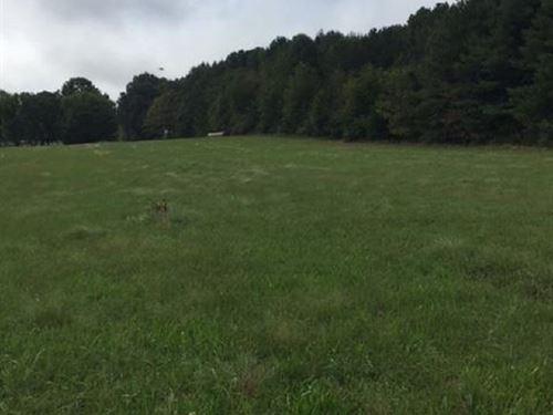 Mostly Level : Farmville : Buckingham County : Virginia