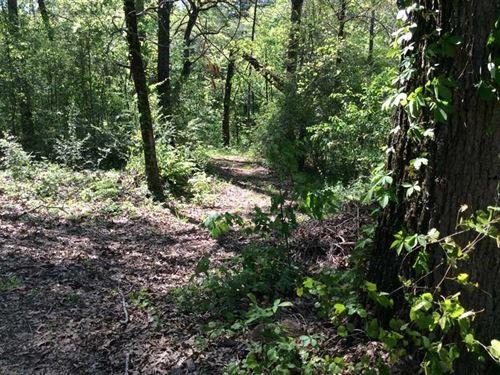 Midge Lacroix Road Tract, Grant PA : Pollock : Grant Parish : Louisiana