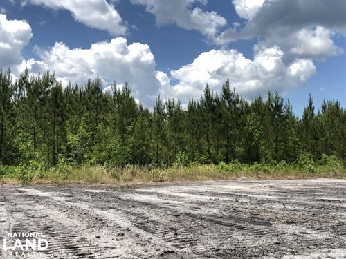 Cane Bay Area 3 Acre Home Site : Summerville : Berkeley County : South Carolina