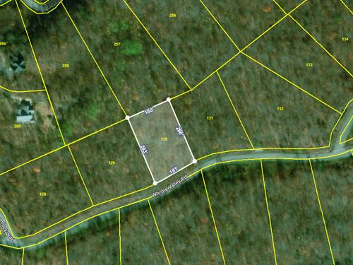 1.10 Acre Lot, Norris Lake Access : New Tazewell : Claiborne County : Tennessee