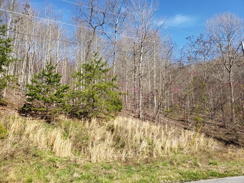 2+ Acre Lot, Norris Lake Access : New Tazewell : Claiborne County : Tennessee