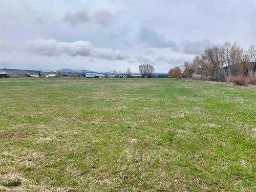 Horse Meadows : Gunnison : Colorado