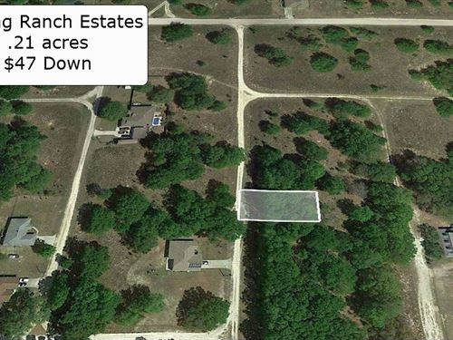 .21 Acre Minutes To Hwy 40 : Dunnellon : Marion County : Florida