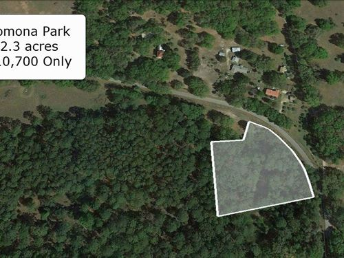 2.3 Acre Great For Farming : Pomona Park : Putnam County : Florida