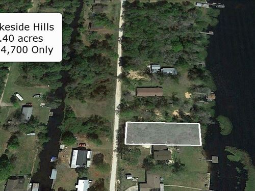 .40 Acre Waterfront Lot On Lake : Florahome : Putnam County : Florida
