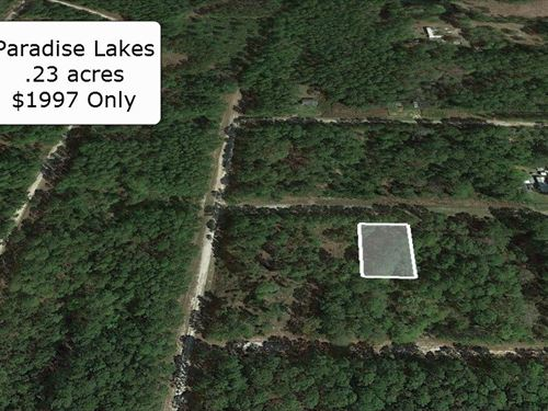 .23 Acre Minute To Lake George : Georgetown : Putnam County : Florida