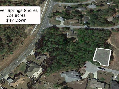 .24 Acre On A Cul De Sac : Ocala : Marion County : Florida