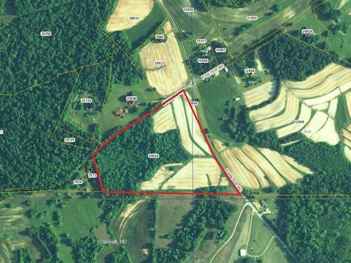 Fertile Cropland In Alton, VA : Alton : Halifax County : Virginia