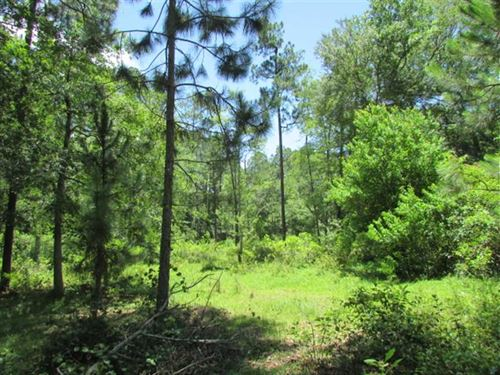 2 Acre Residential Lot in Hartsfie : Hartsfield : Colquitt County : Georgia