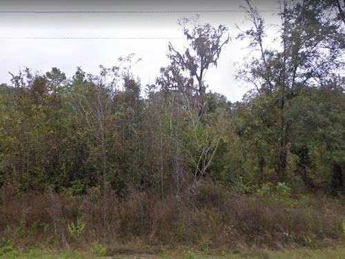 Hamilton County, Fl $35,000 : Jennings : Hamilton County : Florida