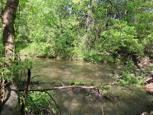 10 Acres On Fresh Water Creek : Zion : Izard County : Arkansas