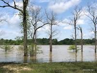 Fishing Camp On Lake Louie, Price : Sicily Island : Catahoula Parish : Louisiana