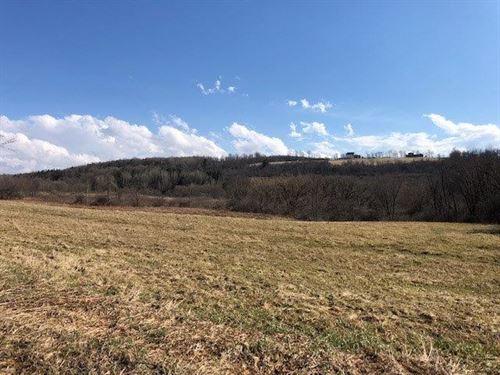 Farm Land Sacrifice : Sharon Springs : Schoharie County : New York