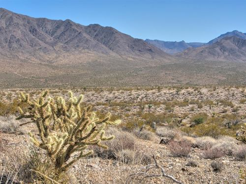 Exceptional Land Buying Opportunity : Meadview : Mohave County : Arizona