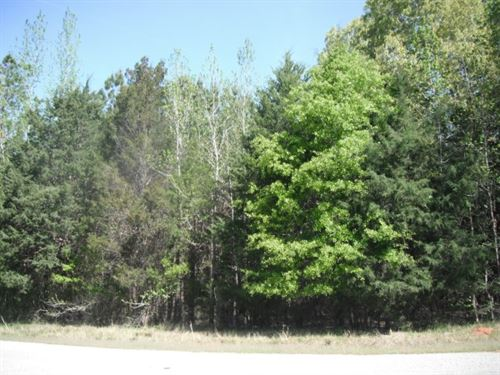 15 Acres, Fairfield County, Sc : Winnsboro : Fairfield County : South Carolina