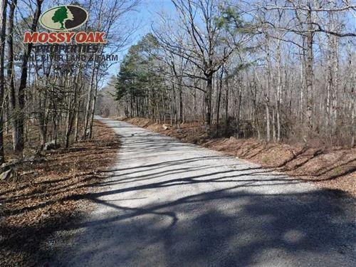 3.23 Acre Lot For Hunting Cabin OR : Scotland : Van Buren County : Arkansas