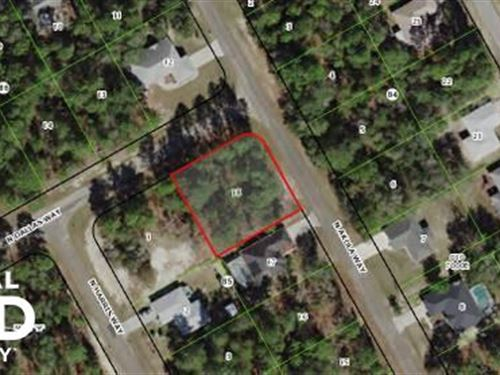 Lot in Citrus Springs For Sale : Citrus Springs : Citrus County : Florida