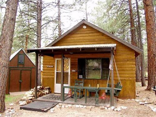 Cabin South Chama NM Brazos Lodge : Chama : Rio Arriba County : New Mexico
