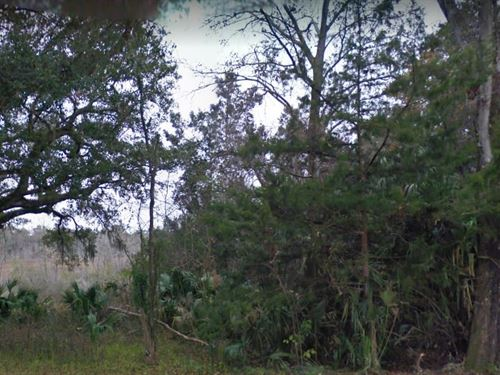 Marion County, Fl $25,000 : Fort McCoy : Marion County : Florida