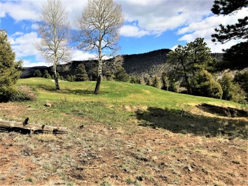 The Ridge, Lot 6 : South Fork : Rio Grande County : Colorado