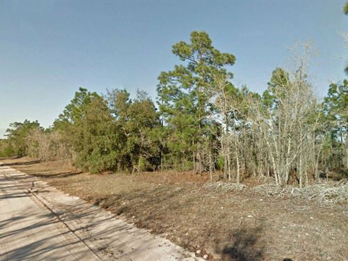 Corner Lot In Lake Lucy Estates : Interlachen : Putnam County : Florida