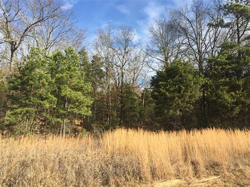 3 Acres in Country in a The Corner : Bald Knob : White County : Arkansas