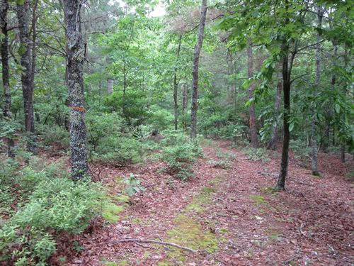 Great Secluded Building Site Close : New Concord : Calloway County : Kentucky