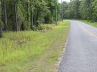 Owner Financing 3.5 Acre : Brooksville : Hernando County : Florida