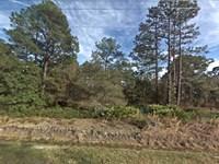 Flagler Estates Mobiles Welcome : Hastings : Saint Johns County : Florida