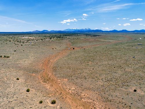 Bring Your Horses : Williams : Coconino County : Arizona