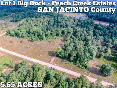 5.65 Acres In San Jacinto County : Cleveland : San Jacinto County : Texas