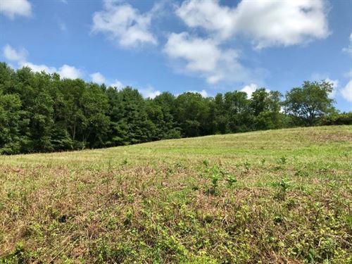 Building Lot in Hillsville VA : Hillsville : Carroll County : Virginia