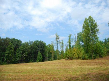 13 Acre Tract Near Cross Anchor : Cross Anchor : Spartanburg County : South Carolina