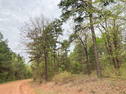 14 Acres Cr 2864 Tract 1017 : Hughes Springs : Cass County : Texas